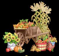 brouette-jardinage
