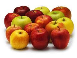 Quel mois signe le retour des pommes dans les jardins et sur les étals ?
