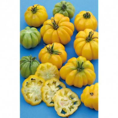 Tomate yellow ruffled